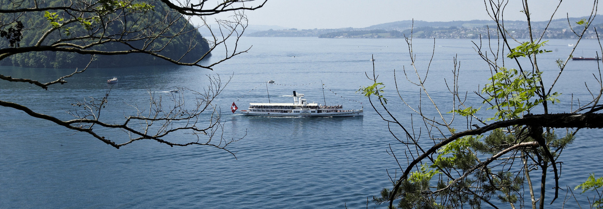 Lake Lucerne Pass: Steamboat Unterwalden is sailing on Lake Lucerne in summer. Elevated view of the steamboat, branches from a tree can be seen on the right and left of the picture.