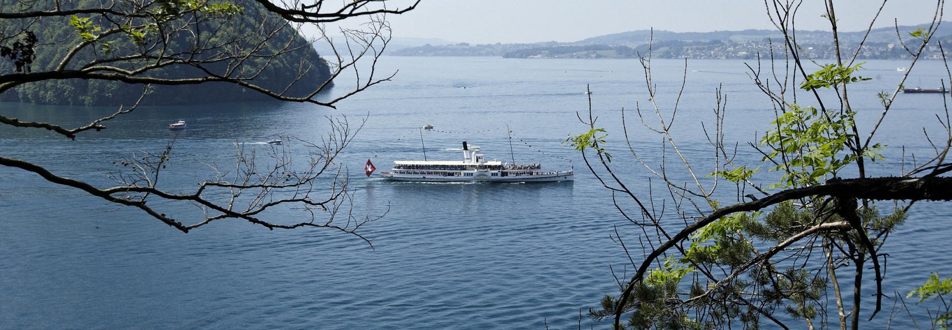 Passe du lac des Quatre-Cantons : le bateau à vapeur Unterwalden navigue sur le lac des Quatre-Cantons en été. Vue surélevée du bateau à vapeur, les branches d'un arbre sont visibles à droite et à gauche de l'image.