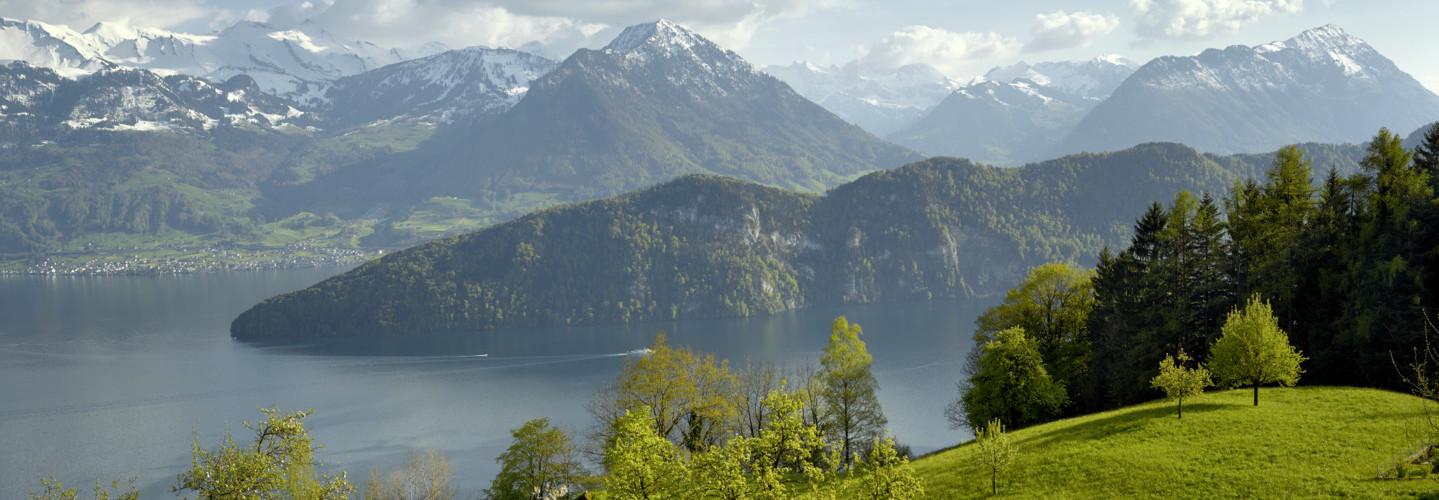 Auf dem Bild sieht man schöne Berge und ein bewölkter Himmel. Man sieht den Vierwaldstättersee. Verschiedene Bäume und einen Wald sind zu sehen.